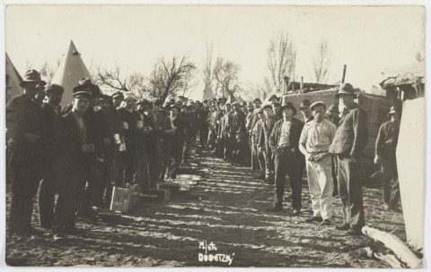 Interned: Torrens Island, 1914-1915